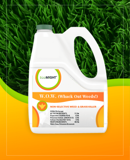 W.O.W. (Whack Out Weeds!)